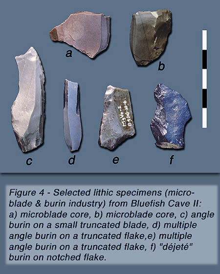 Several stone blades.