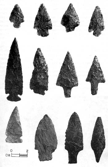 Twelve different spearheads.