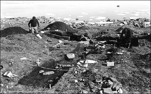 Excavation site at Nunguvik
