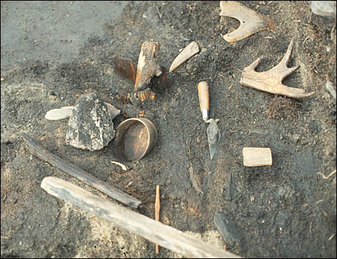 Some preserved bone tools at an archaeological site.