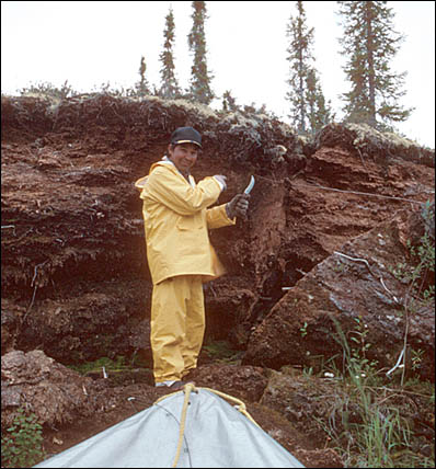 Man standing near a stratified section of peat deposit.