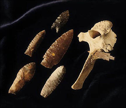 Multiple projectile points.