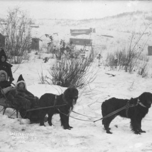 Three children in dogsled