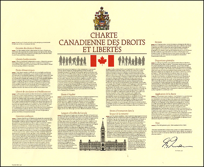 charter of rights and freedoms case studies