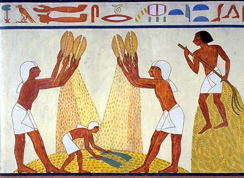 Egyptian civilization - Daily life - Food