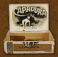 Cigar box label : Check