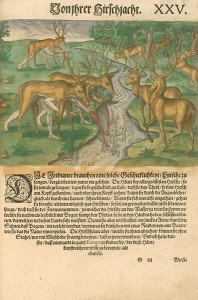 Deer of Virginia Hunting, 1591, by Theodor de Bry