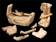 Tobacco pipes and fragments of a clay sagger
