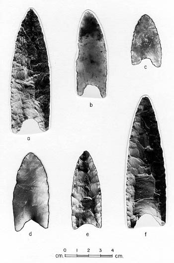 Palaeo-Indian spearheads.