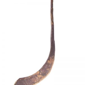 Early hockey stick